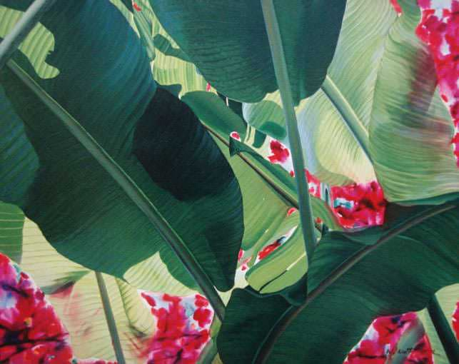 Banana Leaves-Bougainvillea 4